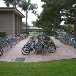 Double Bike Racks